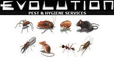 Evolution Pest Control