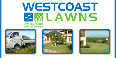 West Coast Lawns | Landscape Cape Town