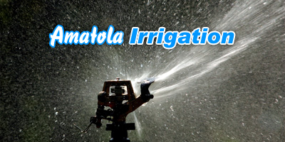 Amatola Irrigation