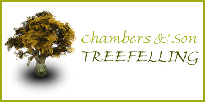 Chambers & Son Treefelling CC