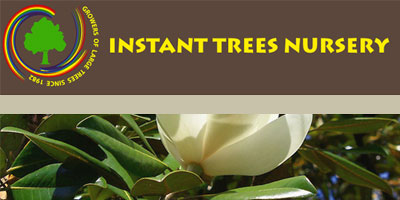 instant trees nursery eastrand