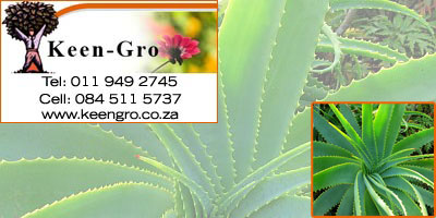 keengro nurseries eastrand
