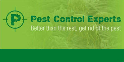 Pest Control Experts Johannesburg