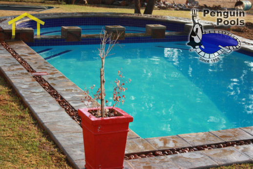 Swimming Pool Nets Port Elizabeth Pool Covers Directory