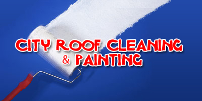 City Roof Cleaning & Painting