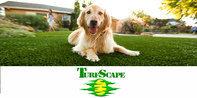 Turf Scape advert